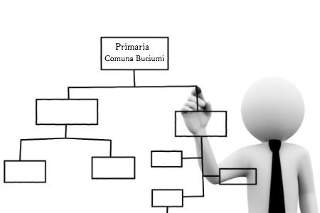 Primaria Buciumi - Organigrama